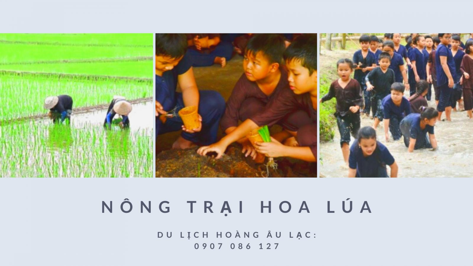 Địa điểm du lịch Hồ Chí Minh 1
